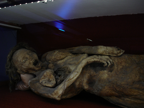 Picture of a Mummified Woman